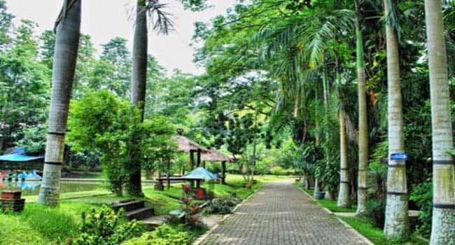 Kampoeng Wisata Taman Lele