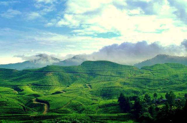 Tempat Wisata Puncak Bogor - Taman Riung Gunung