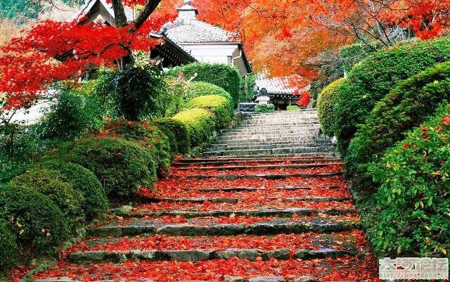 Taman Xiangshan Tempat Wisata di China yang Menakjubkan