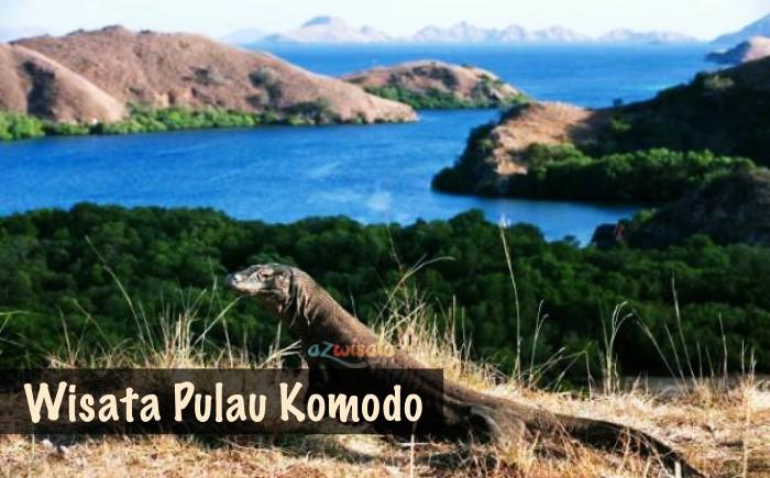 Tempat Wisata Pulau Komodo