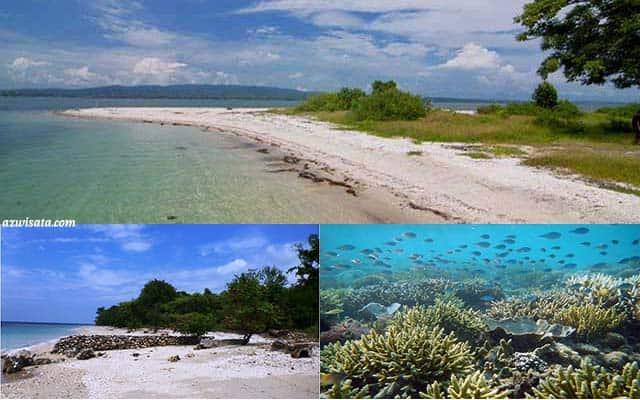 pantai tanjung pasir pulau moyo