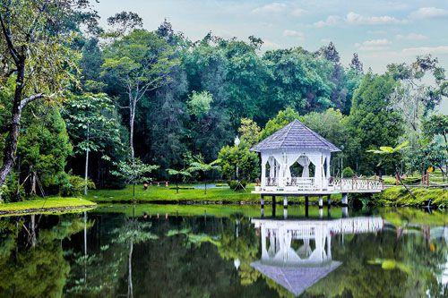 https://www.azwisata.com/wp-content/uploads/2018/07/Tempat-Wisata-di-Sumatera-Utara-Cagar-Alam-Sibolangit.jpg