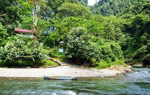 https://www.azwisata.com/wp-content/uploads/2018/07/Tempat-Wisata-di-Sumatera-Utara-Taman-Nasional-Gunung-Leuser.jpg